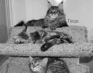 иерархия