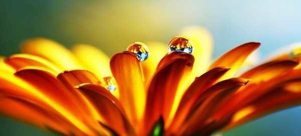 * Медитативна Практика «Споглядання Душі-і-Духа» *
