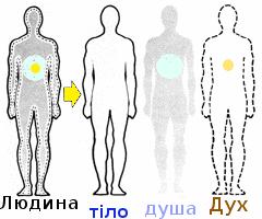 *** людина = Дух + душа + тіло ***