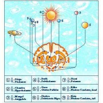 *** Тантра-Джйотіш (Ведична Астрологія) - знання Сил Життя (Грах, планет) у тілі і досвіді людини ***